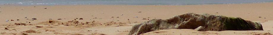 Foto von Strand mit Stein